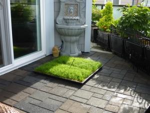 grass pad 3